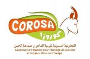 cropped-corosa_logo.jpg
